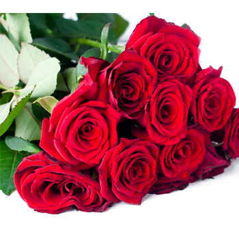 Tunie's Floral Expressions - Red Roses